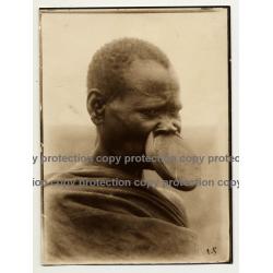 Native African Tribal Man / Upper Lip Plate 2 - Mobali? (Vintage Sepia Photo B/W ~1930s)