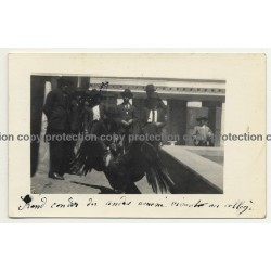 Junin / Peru: Big Condor In Schoolyard Of Colegio (Vintage RPPC 1922)