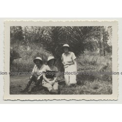 Congo / Africa: 3 Happy Colonial Wifes In Front Of Palm Tree (Vintage Photo B/W ~1930s/1940s)