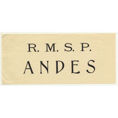 Royal Mail Ship: R.M.S.P. Andes (Vintage Luggage Label)