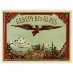 Genepy Des Alpes / Liqueur (Vintage Chromo Litho Label ~1910/1920s)