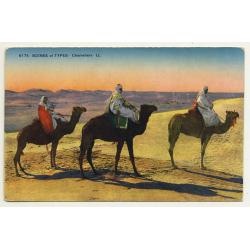 6174 Scenes Et Types: Chameliers / Camels (Vintage Postcard)