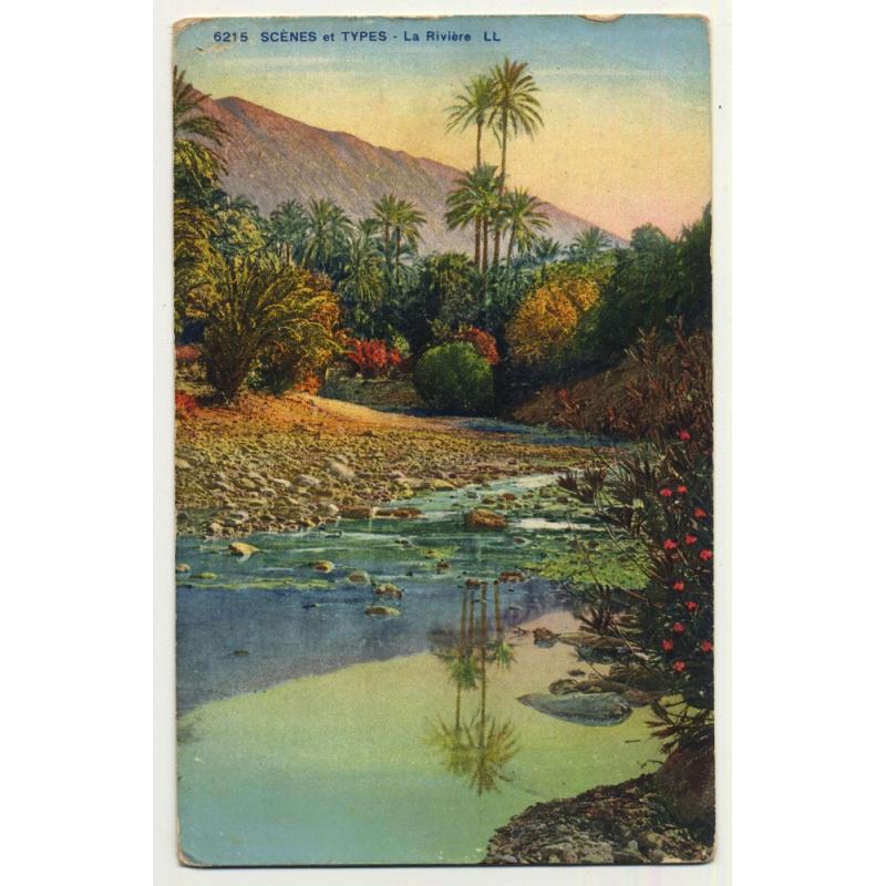 6215 Scenes Et Types: La Rivière / River - Palm Tree (Vintage Postcard)