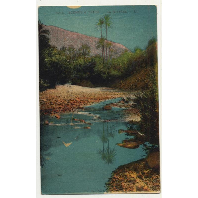 6215 Scenes Et Types: La Rivière / River - Palm Tree *2 (Vintage Postcard)