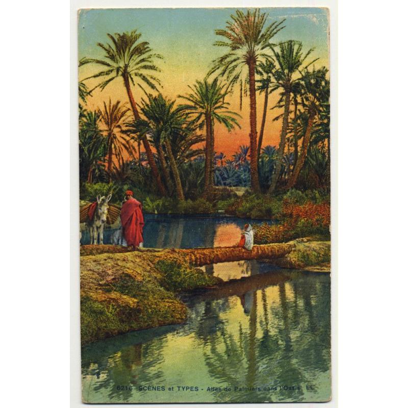 6216 Scenes Et Types: Allée Des Palmiers Dans L'Oasis (Vintage Postcard)