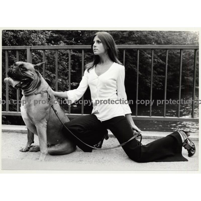 Slim Longhaired Model & Boxer Dog / Flares (Vintage Photo Master 1970s Fashion)